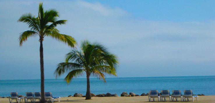 Comment investir dans l'immobilier en Floride ?